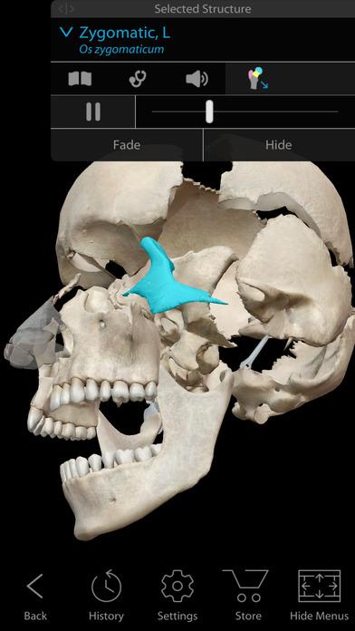 Screenshot do app Human Anatomy Atlas 2018 - Complete 3D Human Body