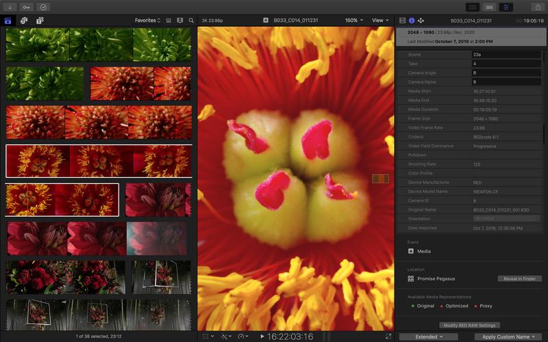 视频制作 Final Cut Pro X 10.4.6 Mac 破解版 最强大视频后期制作软件-麦氪派(WaitsUn.com | 爱情守望者)
