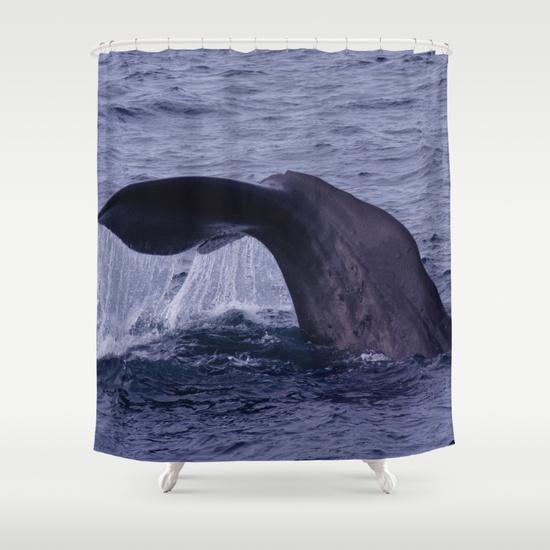 Ocean life shower curtains shower curtain kingdom
