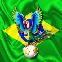 Brazil Macaw Parrot with Soccer Ball!