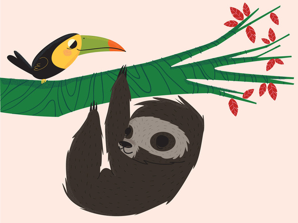 Sloth And Toucan By Helena Garcia Society6