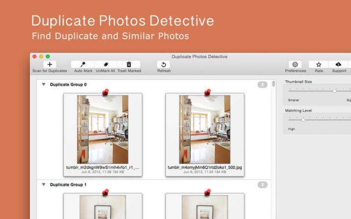 1_Duplicate_Photos_Detective.jpg