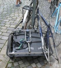 fahrradtransportanhänger (3)