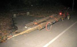 langholztransport (2)