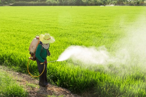 insecticidespray
