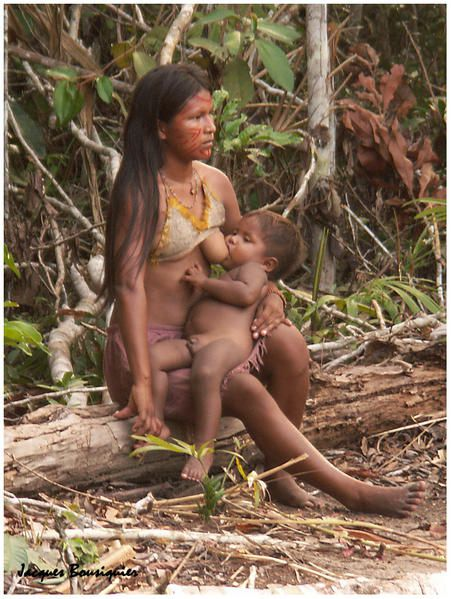 https://i1.wp.com/a398.idata.over-blog.com/451x599/1/35/79/37/BRESIL/village-indien-en-amazonie-4.jpg