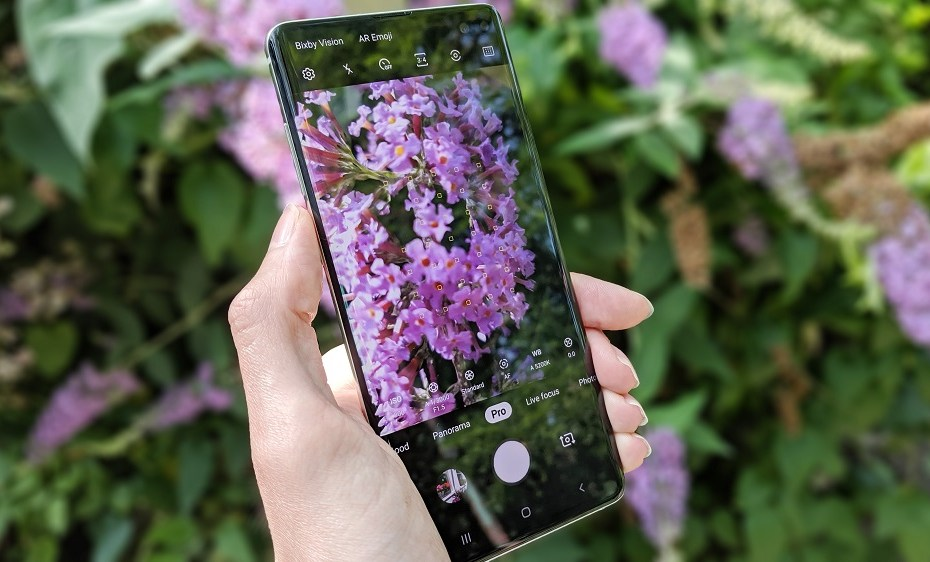 Cheap Samsung phones with good camera quality