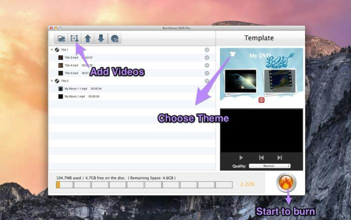 1_BurnStone_DVD_Pro.jpg
