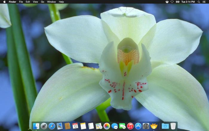 4_Magic_Flowers_-_Living_Wallpaper_Screen_Saver.jpg