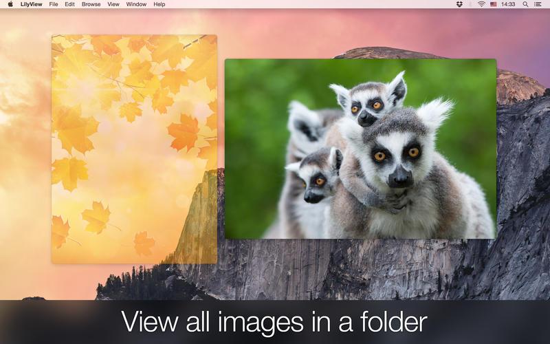 LilyView 1.5.1 Mac 破解版 - Mac 上优秀的轻量级图片浏览工具