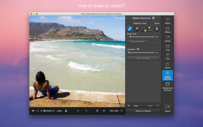 2_Photo_Editor_Movavi_Remove_Objects_Enhance.jpg