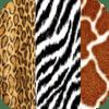 Digital Online Media Pty Ltd - Animal Skins artwork