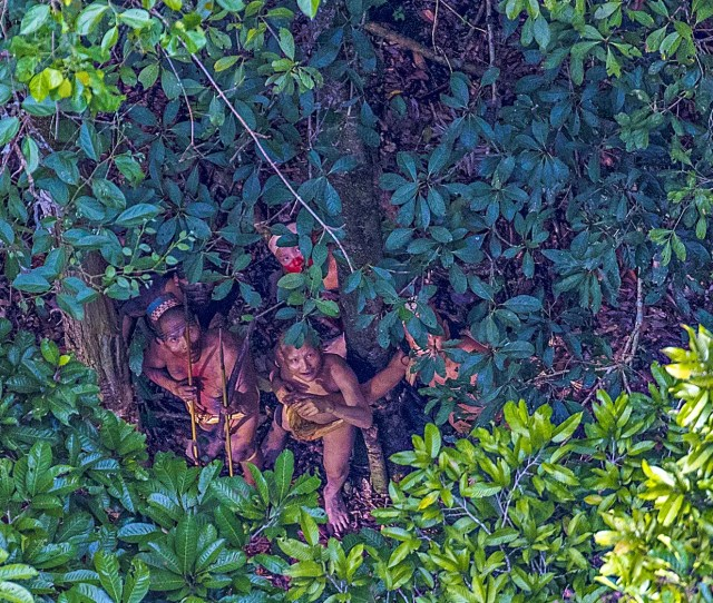 A Small Group Of An Isolated Indian In Amazon Brazil Photograph By Ricardo