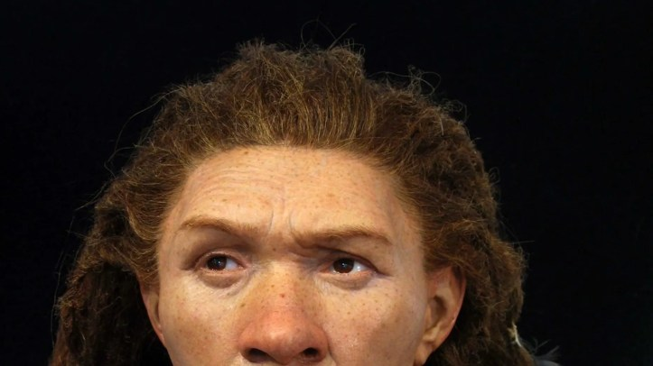 The Neanderthal woman's remains were found in Gibraltar.