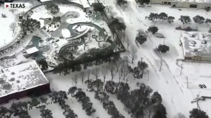 Winter storm cripples Texas Green Energy grid