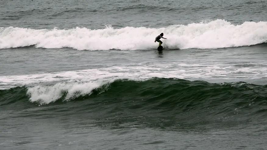 surfercalif.jpg