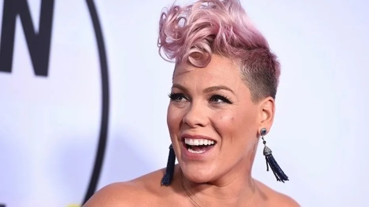 Pink at the American Music Awards, November 19, 2017.