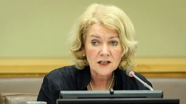 Alison Smale, Under-Secretary-General for Global Communications, Department of Public Information (DPI), addresses the committee during the afternoon session.