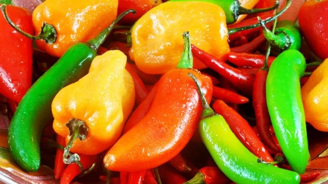 Festive bowl filled with a variety of hot peppers