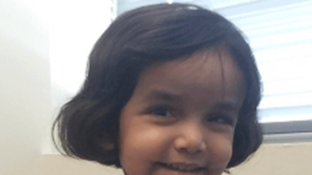 Sherin Mathews vanished early Saturday, according to police in Richardson, Texas.