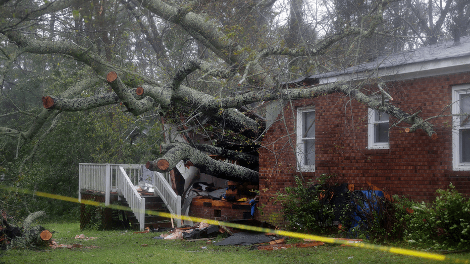 A fallen tree is shown after it crashed through the home where a woman and her baby were killed in Wilmington, N.C., after Hurricane Florence made landfall Friday, Sept. 14, 2018. (AP Photo/Chuck Burton)