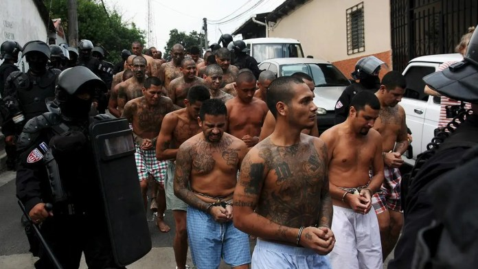 Fox News: MS-13 wants to send 'younger, more violent offenders' to the US