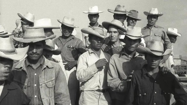 World War 2-era migrant worker program could teach lessons for today's immigration debate, 75 years later