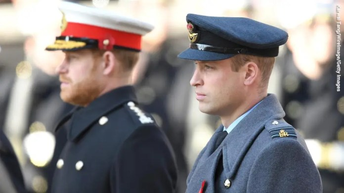 Prince Harry and Prince William are enduring 'fracture fracture' in their relationship after the royal exit: Doctor
