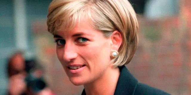 Prince Harry reflected on the struggles his late mother Princess Diana endured in the public eye.