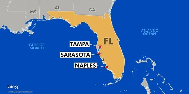 Tampa, Sarasota, and Naples are among cities in Florida hit hard by red tide. (Fox News)