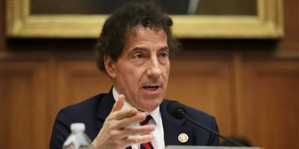 Rip during the hearing of the Anti-Trust, Commercial and Administrative Law Subcommittee of the Home Justice Committee on March 12, 2019 at the Riburn House Office Fee Building on Capitol Hill in Washington DC.  Jamie Raskin (D-MD) asks witnesses questions (Chip Somodevilla / Getty Images))