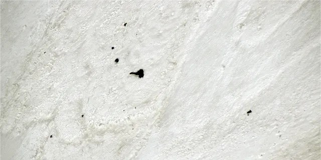 Equipment and bodies believed to be missing climbers can be seen partially buried in snow on Monday on Nanda Devi East in India.