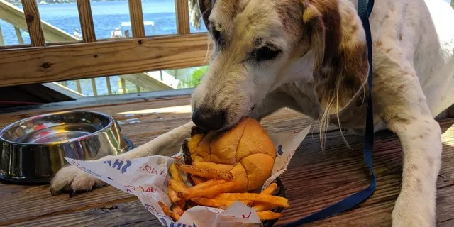 Wilson enjoyed a hamburger and fries during his final days.