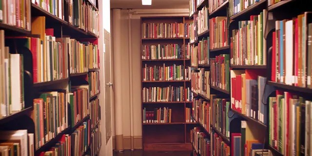 """Public libraries within Chicago have seen a 240 percent increase in the number of books returned after the city's mayor eliminated overdue fines in late September this year.<br data-cke-eol=""""1"""" data-recalc-dims="""