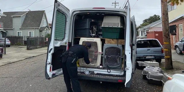 A stolen van with dozens of dogs inside was recovered in Oakland on Monday morning.