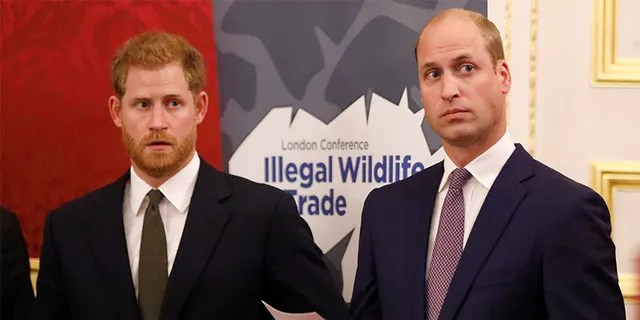 Britain's Prince Harry (left) and older brother Prince William.