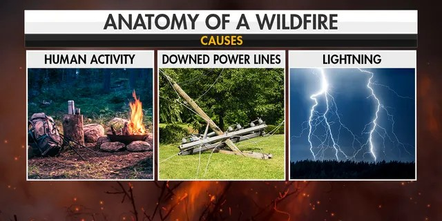 Causes of wildfires. (Fox News)