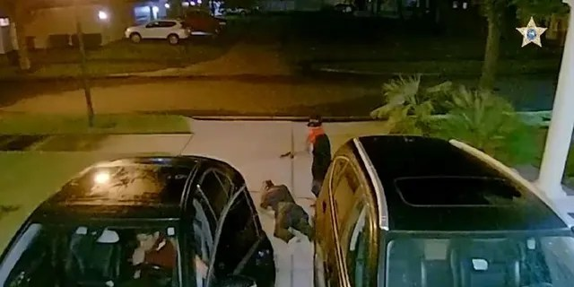 Two armed carjacking suspects confronted a Florida resident after he pulled into his driveway Monday night, authorities said.