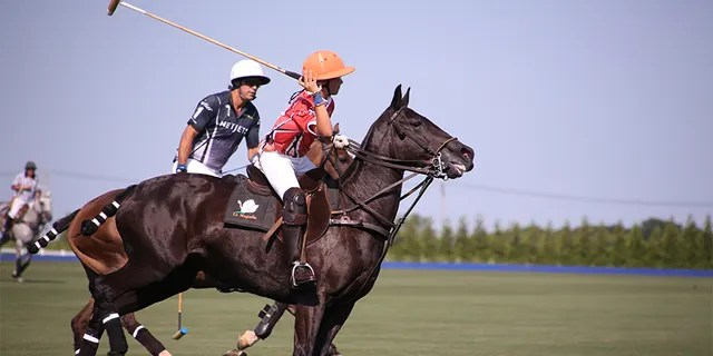 Nacho Figueras misses the competition of polo.