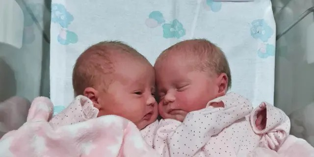 Ava and Amelia survived their mother's battle with COVID-19 and were born healthy last week.