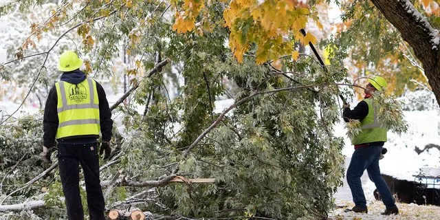 Branches broke off of trees throughout Idaho over the weekend after wet snow fell on trees that haven't lost their leaves yet.