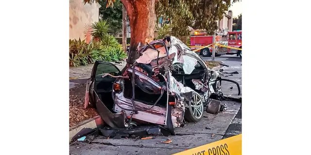 Monique Munoz was driving a Lexus when a Lamborghini crashed into her and killed her.