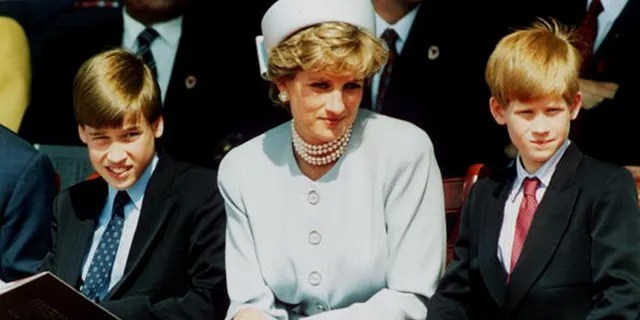 Princess Diana, Princess of Wales with her sons Prince William and Prince Harry attend the Heads of State VE Remembrance Service in Hyde Park on May 7, 1995 in London, England.  (Photo by Anwar Hussein/Getty Images)