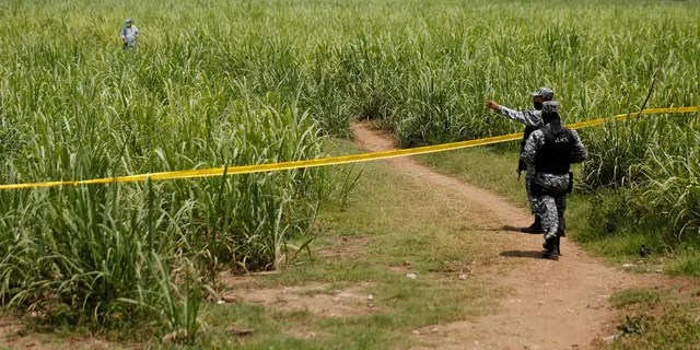 Police officers secure the perimeter of the site where the mass grave was dug (source, .Jose Cabezas/Reuters)