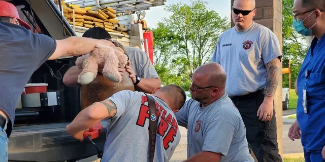 Emergency workers assess the situation after Dorian Strubing gets stuck up to his neck.