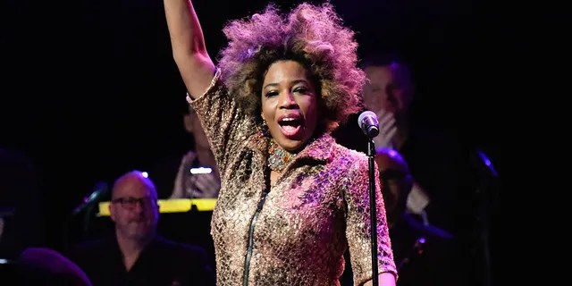 Macy Gray pitched her design for an updated version of the U.S. Flag.