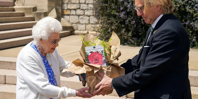Britain's Queen Elizabeth II receives a Duke of Edinburgh rose, given to her by Keith Weed, President of the Royal Horticultural Society, at Windsor Castle, England, Wednesday June 9, 2021. The newly bred deep pink commemorative rose has officially been named in memory of the late Prince Philip Duke of Edinburgh. A royalty from the sale of each rose will go to The Duke of Edinburgh's Award Living Legacy Fund to support young people taking part in the Duke of Edinburgh Award scheme.
