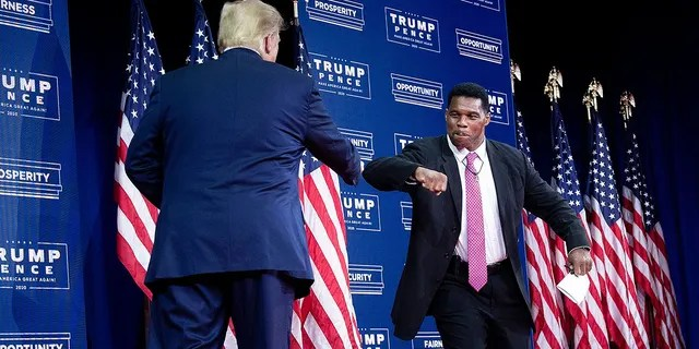 Then-President Donald Trump is greeted by NFL hall of fame member Herschel Walker during an event for black supporters at the Cobb Galleria Centre September 25, 2020, in Atlanta, Georgia. (Photo by Brendan Smialowski / AFP) (Photo by BRENDAN SMIALOWSKI/AFP via Getty Images)