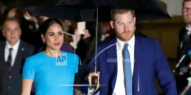 Meghan Markle and Prince Harry's new animated series comes as part of the couple's partnership with Netflix. The multi-year partnership is expected to produce documentaries, docu-series, feature films, scripted showsand children's programming.