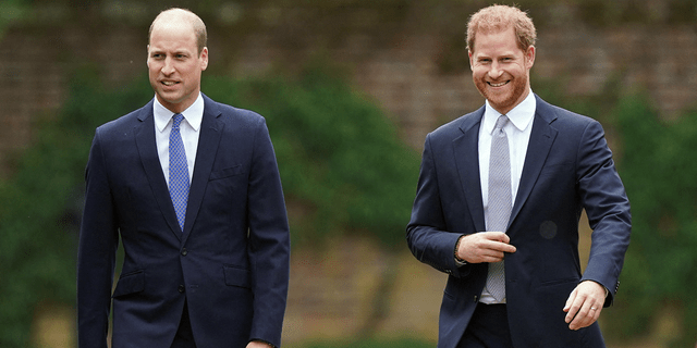 Prince William and Prince Harry at Princess Diana's statue unveiling.